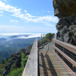mount-tam-photo-hike2